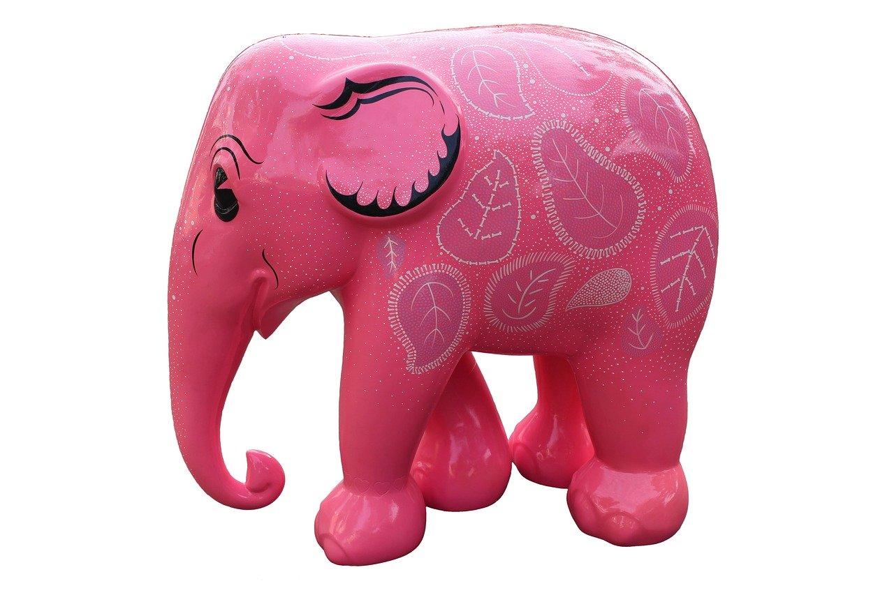 pink elephant room